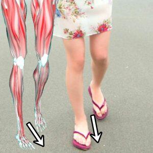 奥山かずさ美脚の骨格